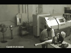 Security Spy cam sex video of a worker who diddles his woman after hours.