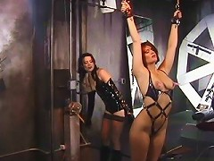 Fuckable slave in leather harness gets her wrists cuffed and her nipples clasped with clothespegs