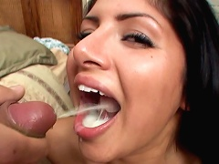 Peter North gets his cock serviced by horny Sativa Rose