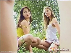 Two teenage girls are picking flowers in a field. The camera is constantly taking upskirt close ups. A third girl appears who m